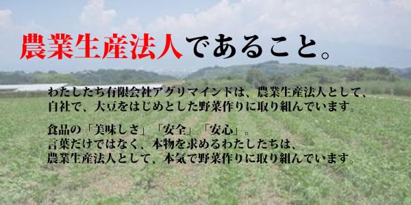 title_nogyoseisanhojin